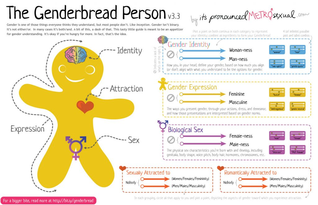 Gay Test - Genderbread Person